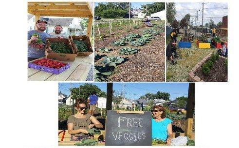 Seeds of Hope Community Garden