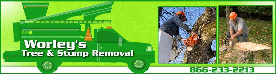 Tree Care and Lot Clearing - Crossville, TN - Worley's Tree & Stump Removal