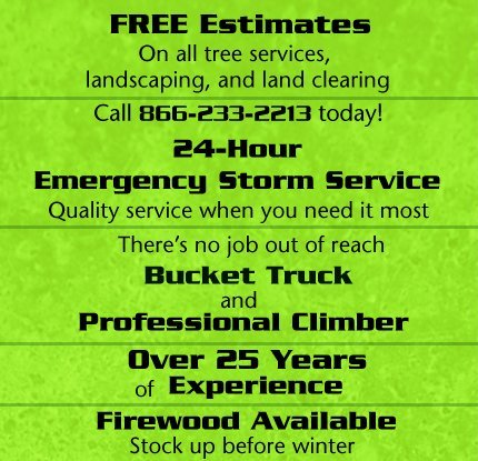 Worley's Tree & Stump Removal - Crossville, TN - Tree Care and Lot Clearing