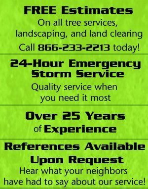 Landscaping Contractor - Crossville, TN - Worley's Tree & Stump Removal