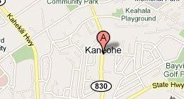 Wong's Products, LLC PO Box 805 Kaneohe, HI 96744