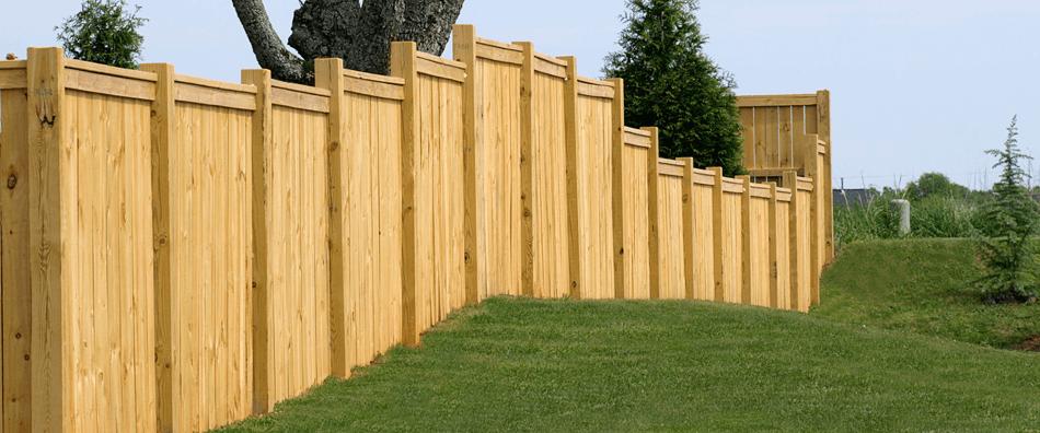 Fence for garden