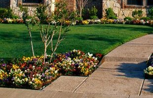Well designed flower beds