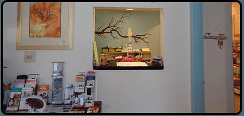 vaccinations | Sarasota, FL | Cat Hospital Of Sarasota | 941-921-4040