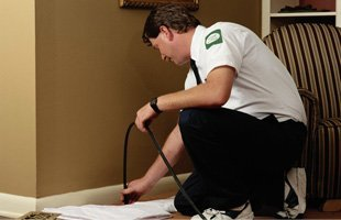 Certified pest control experts | Oklahoma City, OK | Accura Pest Control | 405-229-9782