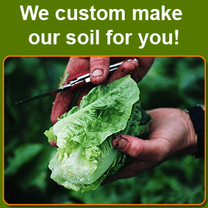 feed - Montgomery County, TX - My Feed Store and More - gardening vegetables - We custom make our soil for you!
