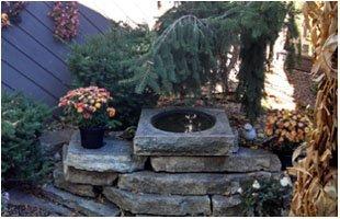 Colene Grecian DDS garden area