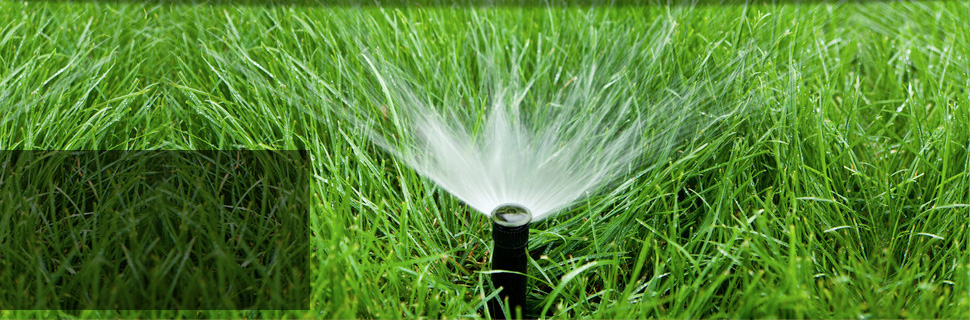 Working sprinkler