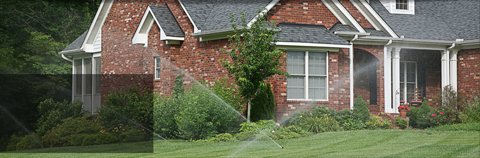Water and sprinkler