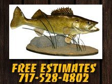 Taxidermists - York Springs, PA - Outback Imagery Taxidermy