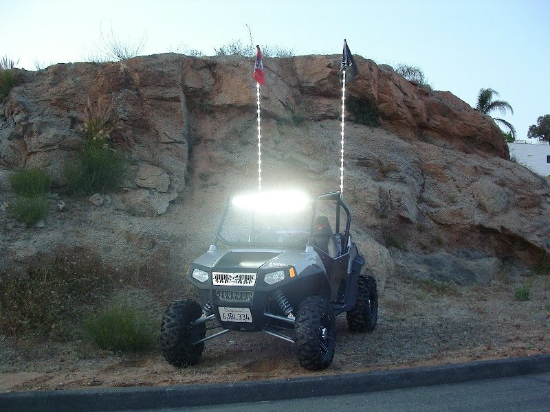 Rzr with whips