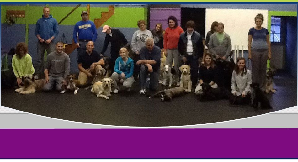 dog training | Wilkes Barre, PA | K-9 Korner Inc | 570-829-8142