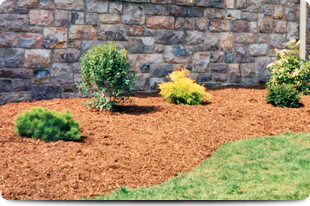 Mulching | Kings Park, NY | Landscaping by Fredis, Inc | 631-269-6774