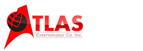 Atlas Exterminator Co Inc - Pest Exterminator Baltimore MD