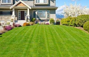 Landscape Maintenance & Care Spokane WA | Lawn Aeration  - Spokane Pro Care